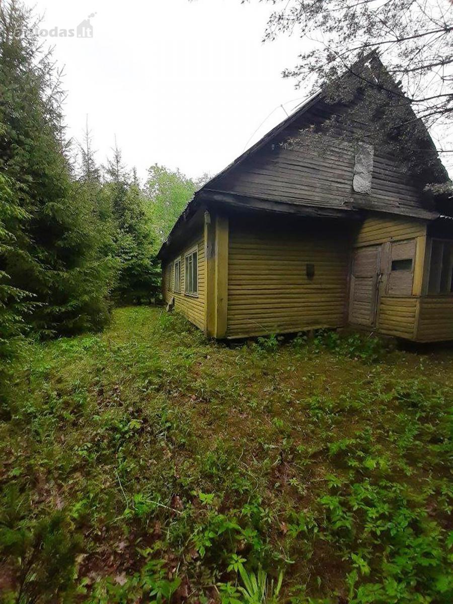 Aruodas.lt neseniai paskelbė apie Turto banko viešame elektroniniame aukcione parduodamą valstybei nuosavybės teise priklausantį štai tokį rąstinį namą Ukmergės r. Mėgučių kaime. Aruodas.lt nuotr.
