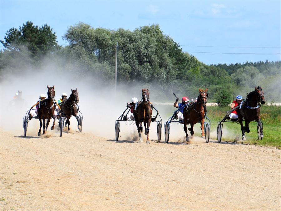 Greičiausi žirgai varžėsi dėl Ukmergės mero taurės