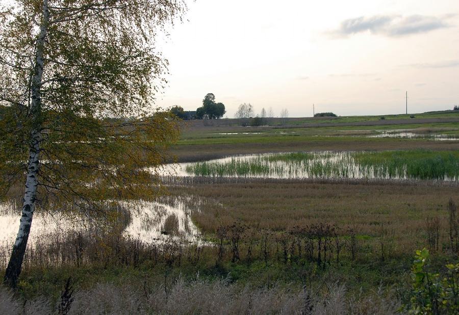 Ūkininkų laukai virto ežerais. Gedimino Nemunaičio nuotr.